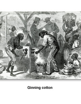 Jacskon Jacksonian 01 Ginning Cotton