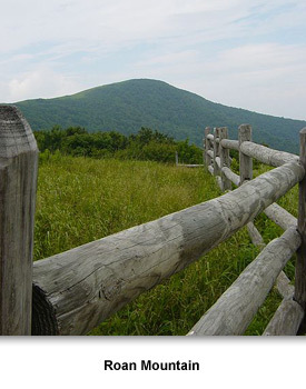 American Revolution 01 Roan Mountain