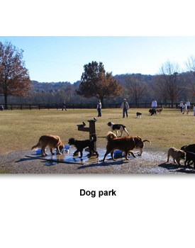 Info Leisure 03 Dog Park