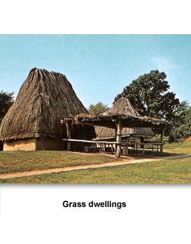 Mississippian Towns 03 grass dwellings