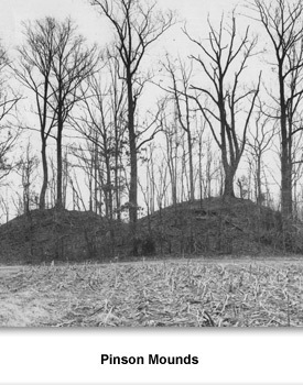 TN Digs 03 Pinson Mounds